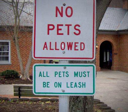 Haustiere nein und bitte an der Leine