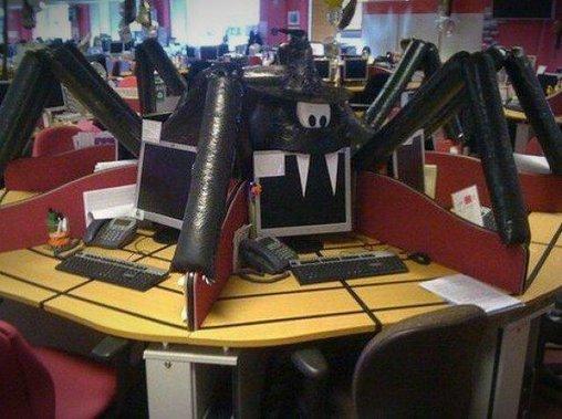 Spinnen im Büro