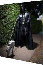 Darth Vater on Tour