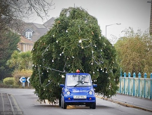 Für den Christbaum-Transport sollte man auch das passende Fahrzeug wählen.