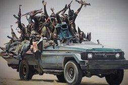 Krümelmonster auf Keks-Jagd zwischen afrikanischen Streitkräften