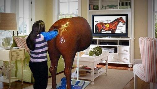 WTF? - Wii Pferd??