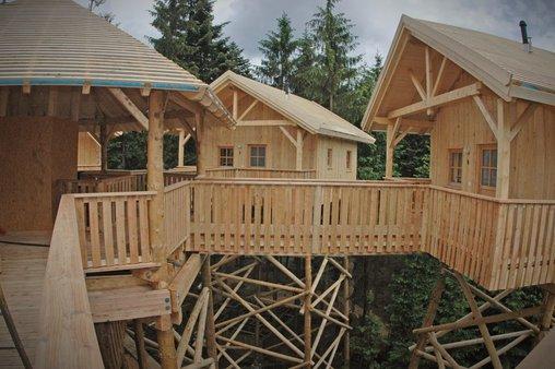 Ein Hotel in den Baumkronen
