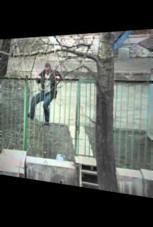 Betrunkener versucht, über Zaun zu klettern
