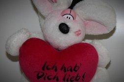 Ich hab dich lieb - Diddl
