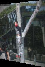 Mit Klebeband am Baum festgezurrt