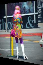 Hippie - farbenfroh wie ein Papagei