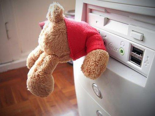 Was sucht dieser Bär wohl im Computer?