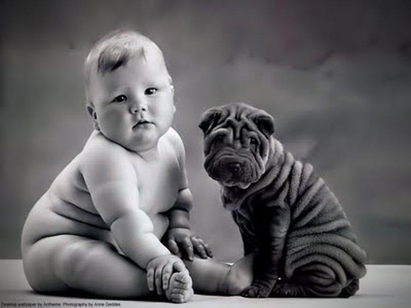 hund und baby sehen sich zum verwechseln hnlich. Black Bedroom Furniture Sets. Home Design Ideas