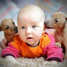 baby und tiere