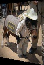 So sieht der neue Sheriff aus