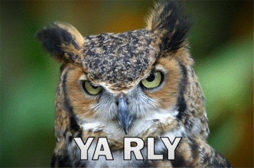 YA RLY OWL – Ja wirklich!