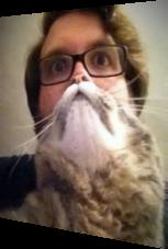 Ist das ein Bart? Nein, eine flauschige Katze.