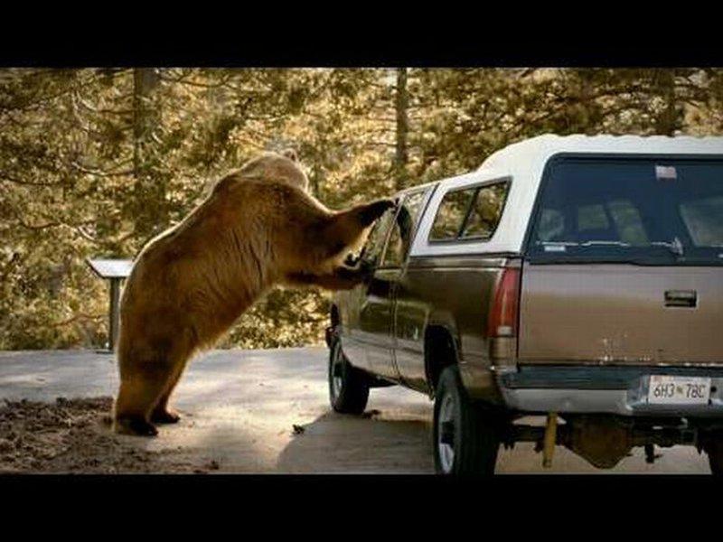 Yosemite Car Crash