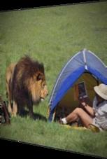 Überraschungsgast im Zelt